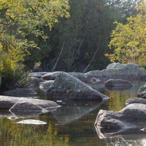 """le Tarn au """"Gasbiel"""" - Mt Lozère"""