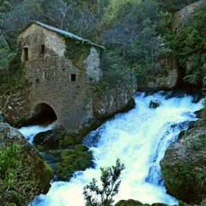 résurgence aux Moulins de la Foux