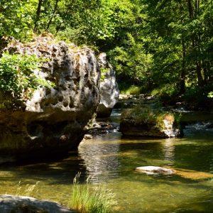 La Jonte, en amont de Peyreleau (12)