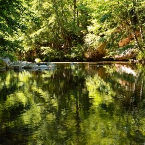 La Jonte, vers Peyreleau (Aveyron)
