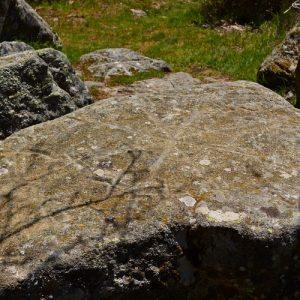 """Gravures rupestres au """"Rec del Bosc"""" (Col de la Frajure - Tarn)"""