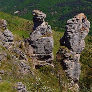 rocs -Causse Méjean (Vallée du Tarnon)
