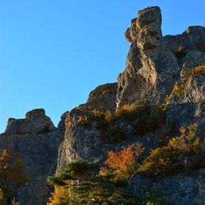 Roquesaltes - Causse Noir, Aveyron