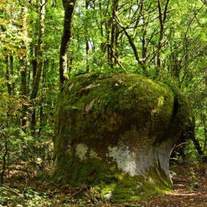 les Rocs de Crémaussel -  Sidobre
