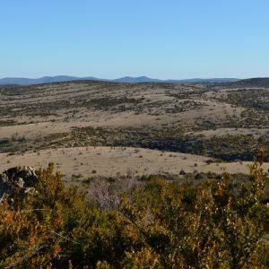 Causse du Larzac, vue du Roc de Mérigou