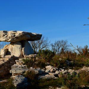 dolmen de la Pinarède (au nord du Causse du Larzac)