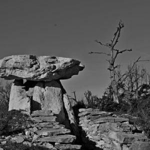 dolmen de la Pinarède (Causse du Larzac)