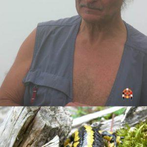 Nutrisco et extinguo - Au pied de l'Escalette (1 640 m) dans les nuées... Salamandre, rencontre (mémorable !) au bois de Salabe (1 470 m)