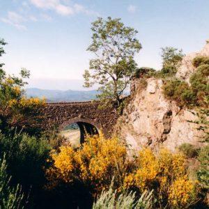 La draille au pont moutonnier - La draille passe au col de l'Asclier en Cévennes du massif de Aigoual