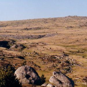 Fond du Dentau - mont Lozère