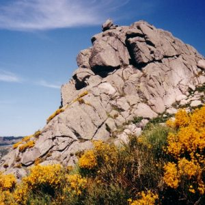 Rochers de Trenze - Au-dessus de Nojaret, dans le massif du Lozère