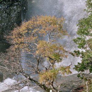 Cascade du Montlouvier - En automne