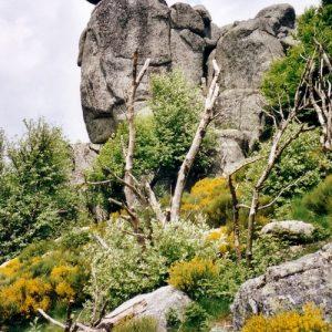 Rocs de Montal
