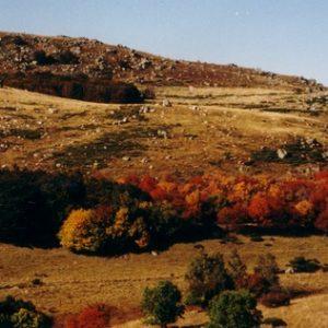 Peyrelade - Vers le Cros, (Tour du mont Lozère)