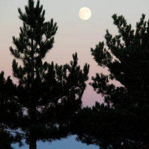 """pleine lune, """"Pré de Terron"""" (Massif de l'Aigoual)"""