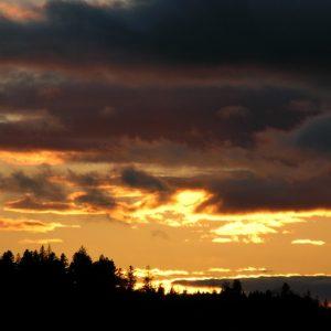 """coucher de soleil, """"Pré de Terron"""" (Massif de l'Aigoual)"""