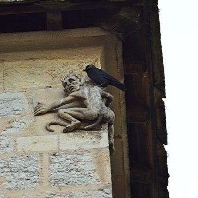 """Belzébuth et son """"oiseau* d'augures"""" ! (choucas)"""