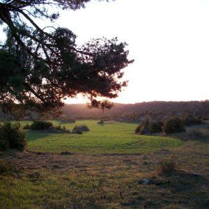 """jardin zen agricole"" ... Causse duLarzac (Couvertoirade)"