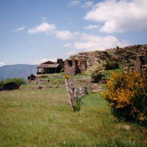 Bonperrier, étape de la transhumance en Cévennes du mont Aigoual, qui s'effectue vers la mi-juin