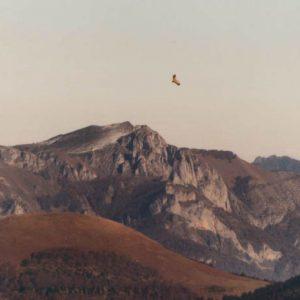Cap de Pouy de Hourmigué et le pic du Gar - Vue du mont Né