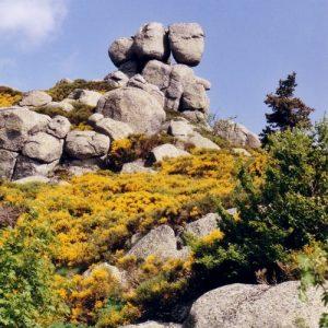 Roc de Chambelève - Au-dessus de l'Hôpital, au mont Lozère