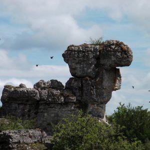 """""""tête de dromadaire"""" Chaos de Nîmes-le-Vieux"""