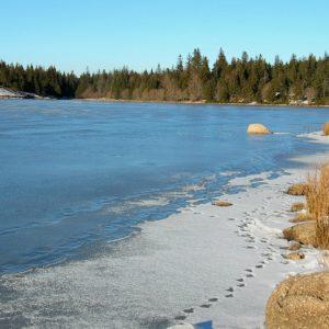 bord du lac des Pises l'hiver