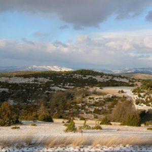 Causse du Larzac, au loin le massif de l'Aigoual