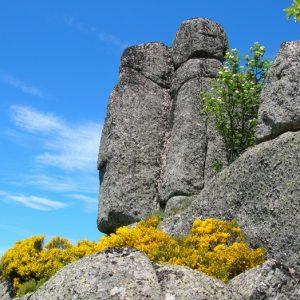 """Rocs de Montal """"totems"""" - Mont Lozère"""