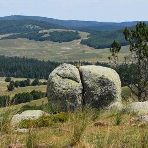 vue sur le Lingas, vers le col des Pises - Mt Aigoual [Brancusi (le baiser)]