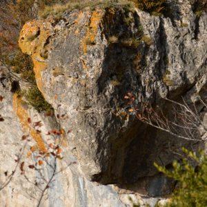 Roc de Roquesaltes - Causse Noir