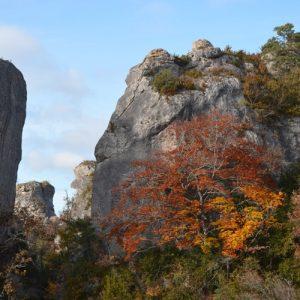l'automne à Roquesaltes