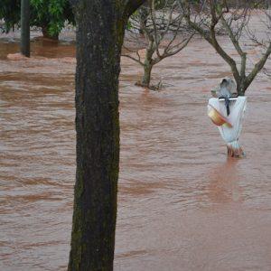 """""""détresse""""... ! inondation du """"Dourdou"""" (nov. 2014 Vabres-l'Abbaye, Aveyron)"""