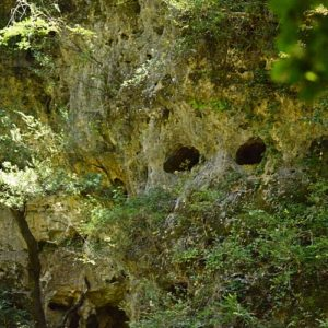 berges de la Vis en aval du Moulin de la Foux