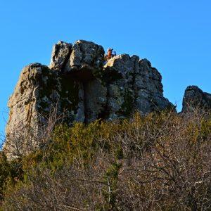 sur le Roc de Mérigou - Causse du Larzac