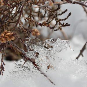 glace ... au Lévézou (12)
