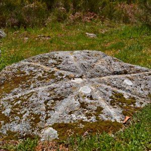 """Gravure rupestre au """"Rec del Bosc"""" (Col de la Frajure - Tarn)"""