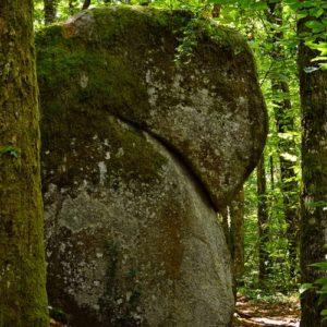 Le champignon - Sidobre, les Rocs de Crémaussel