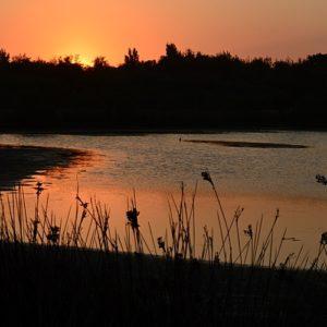 coucher sur les étangs de Vendres plage