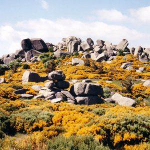 Chaos de rochers du Couillou - Au-dessus de Finiels, mont Lozère