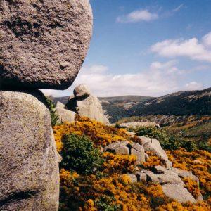 Roc du Couillou - Entre Finiels et le col de Finiels, mont Lozère