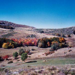Vers le Cros... Peyrelade... tour du mont Lozère