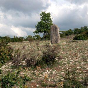 menhir - Causse de Blandas (Gard)