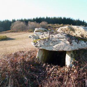 Dolmen du Puech (Montjaux - 12)