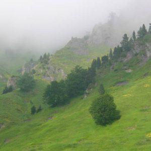 Pales de Miche, 1 900 m