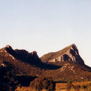 Le pic Saint-Loup au matin - Dans l'Hérault