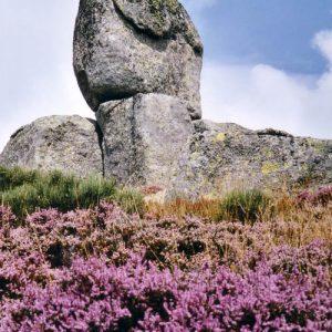 Bruyères et granit - Roc des Mulets
