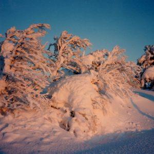 Le Portalet, au couchant... Cévennes du mont Aigoual