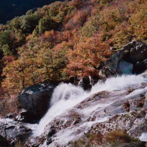 Cascades du Montlouvier