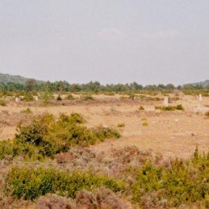 cromlech - Causse de Blandas (Gard)